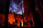 20051013203706_campfire.jpg